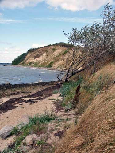 Typisch für das angeliter Land: Die Steilküste